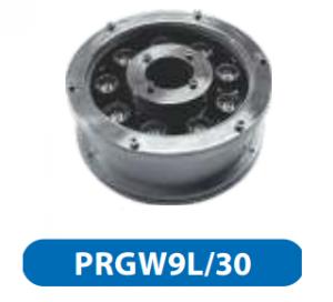 Đèn led âm sàn 9w PRGW9L/30