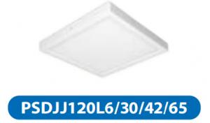 Đèn led downlight gắn nổi 6w PSDJJ120L6/30/42/65