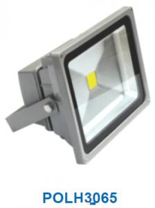 Đèn pha không thấm nước 30w POLH3065
